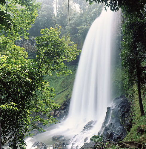 Da Lat's Waterfalls