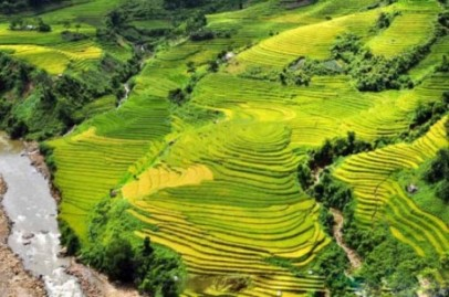 Sapa Top Travelers' Choice